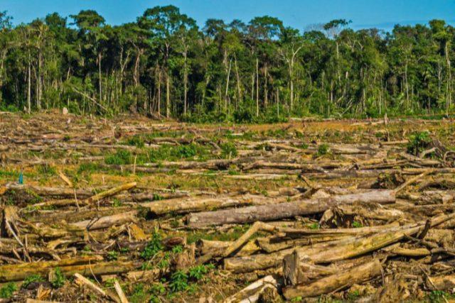 Cuidado ambiental en Perú