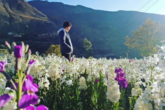 Tarma, La Perla de los Andes